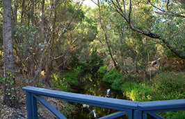 Bannister Creek Living Stream Perth